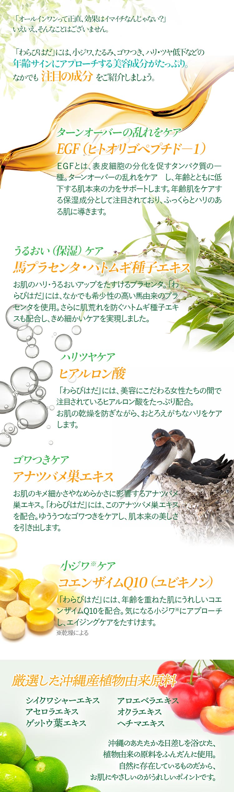 注目の成分/EGF(ヒトオリゴペプチド-1)、馬プラセンタ・ハトムギ種子エキス、ヒアルロン酸、アナツバメ巣エキス、コエンザイムQ10(ユビキノン)、厳選した沖縄産植物由来原料